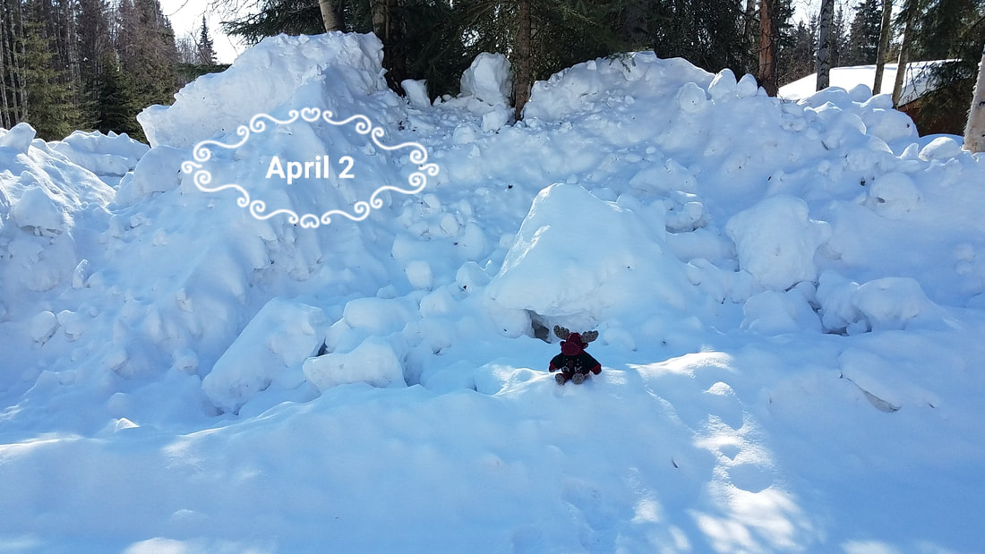 Neighborhood snow on April 2, 2018, red moose for reference