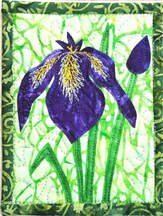 Wild Iris Quilted Card